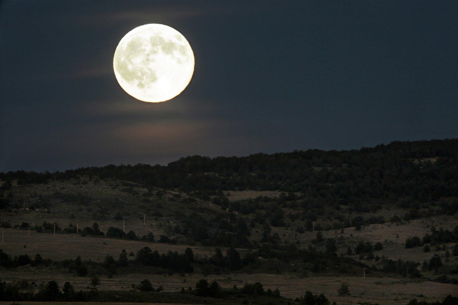 Hor scopo desde el 11 al 17 de agosto del 2014 for Que luna tenemos hoy
