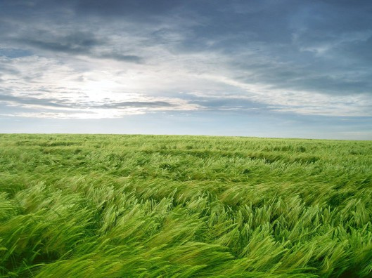 Resultado de imagen para aire y viento