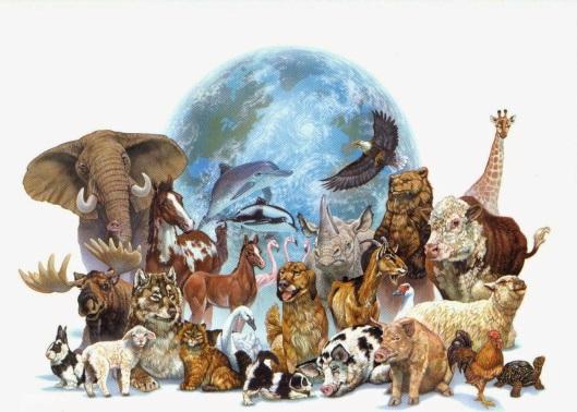 animal_mural_jpg