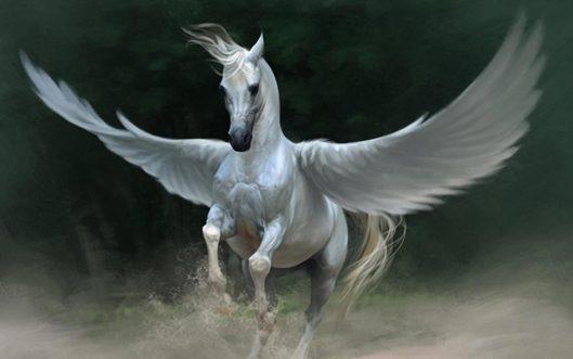 portada-pegaso-caballo-alado